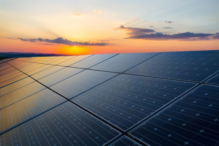 Natures Organics flicks the switch on massive solar installation